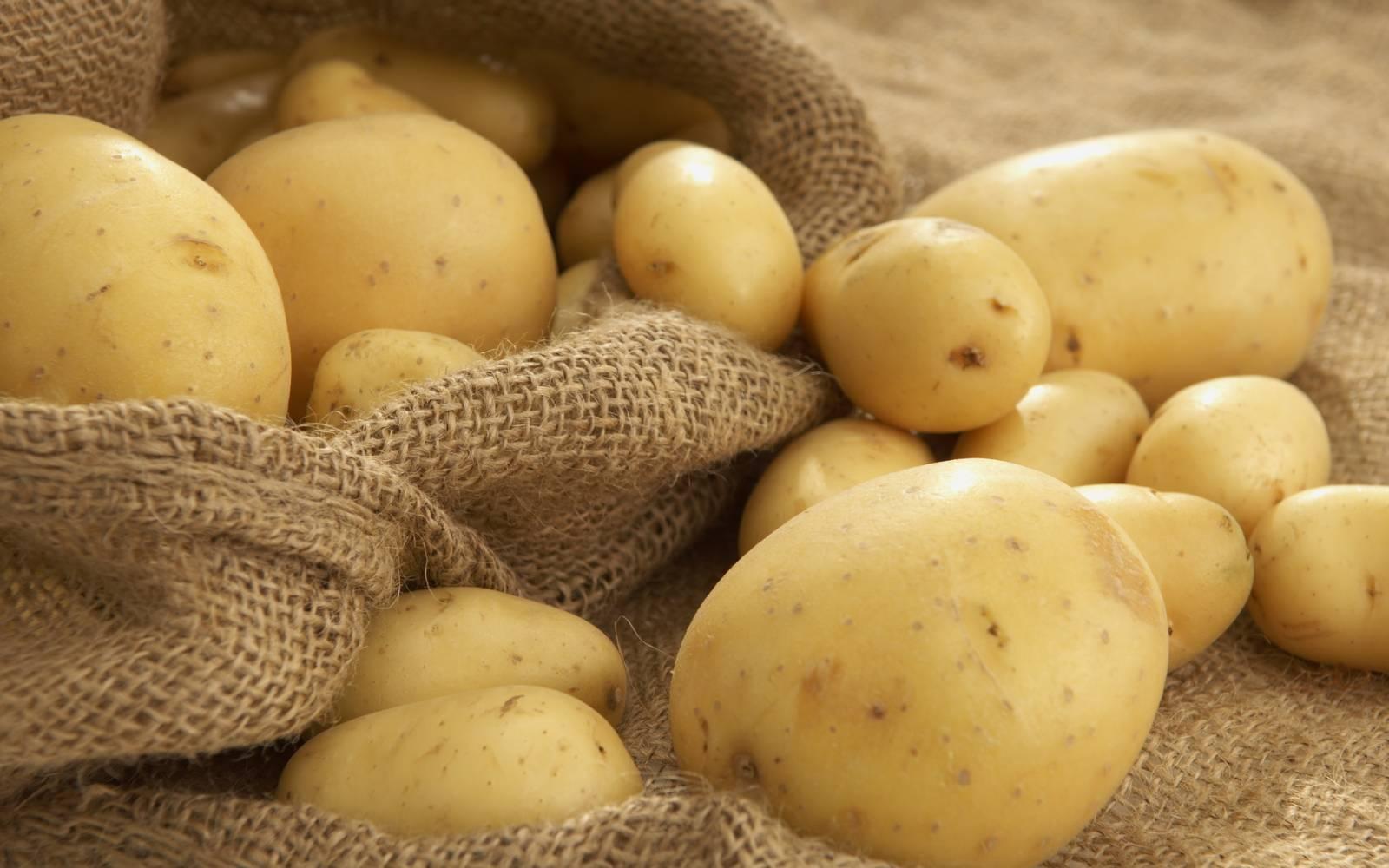 Небольшое количество отварного картофеля только пойдет на пользу организму