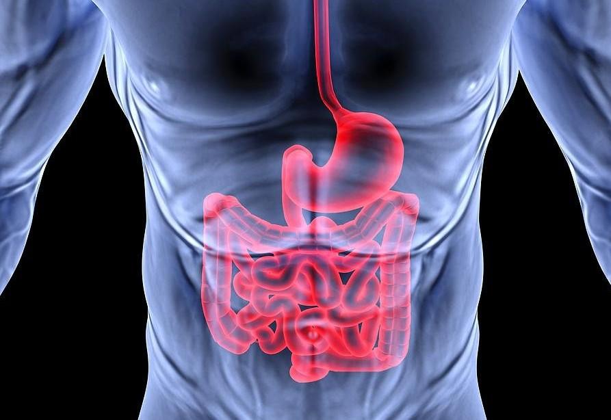 Опущение органов ЖКТ приводит к холециститу и панкреатиту