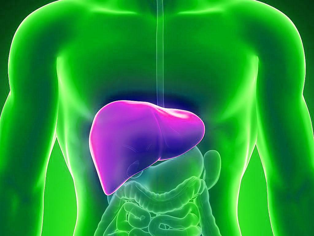 Цирроз печени может повлиять на развитие панкреатита